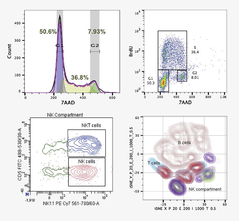 Facs Analysis Flow Cytometry